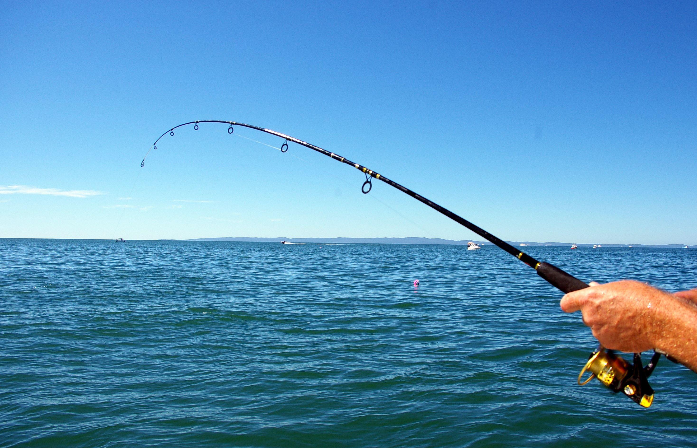 рыбная ловля на спиненг